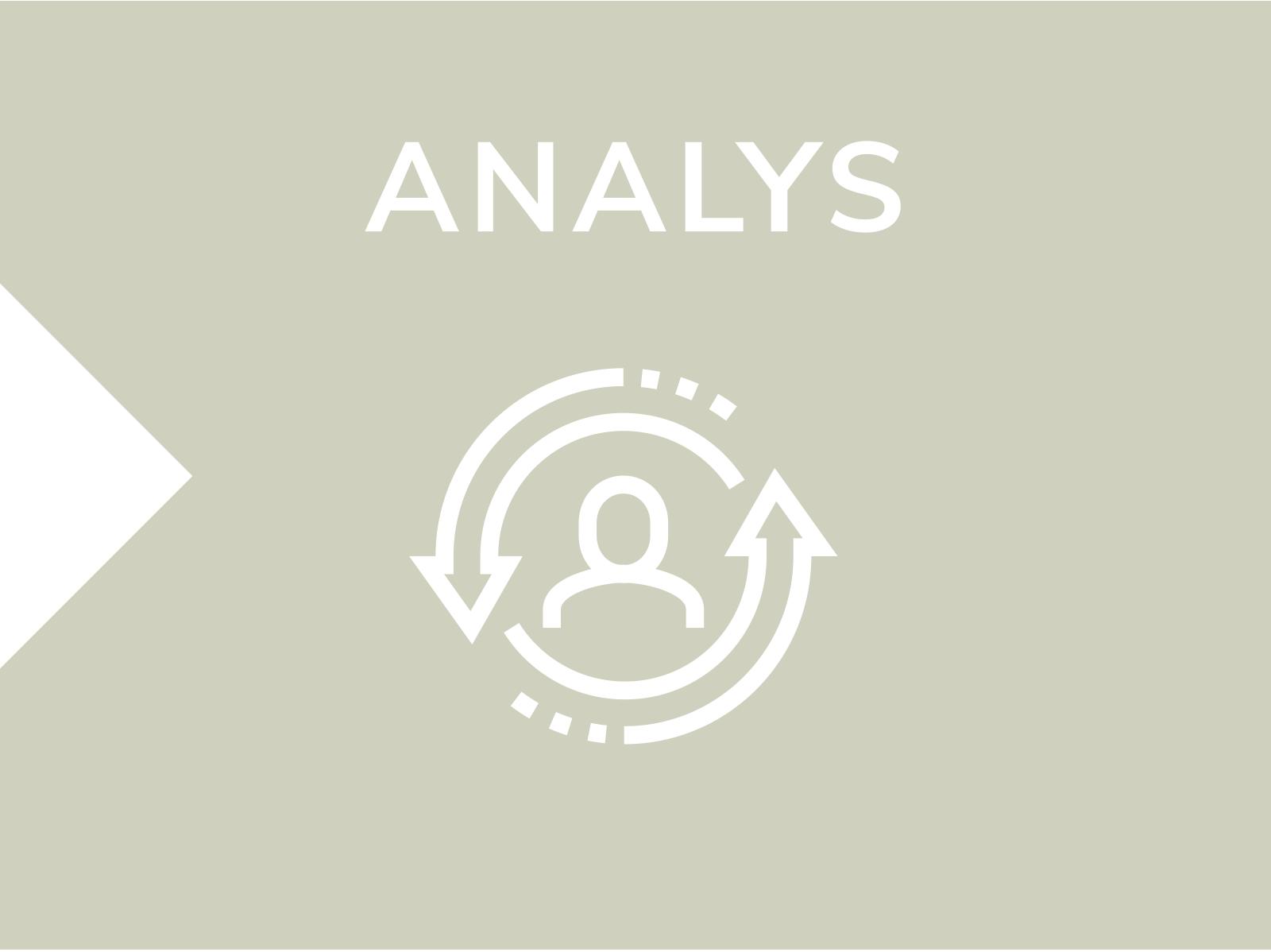 Process-analys