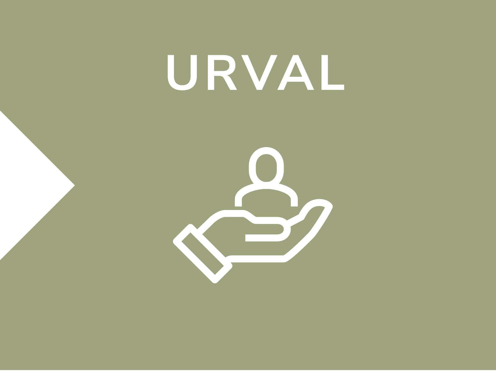 Process-urval